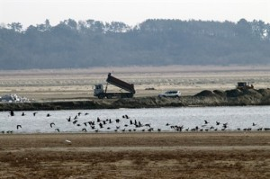 saemangeum-embanked-tidal-flats-to-be-converted-into-agriculture-and-other-use-south-korea_1d15