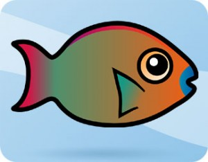 rainbow-parrotfish