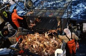 deck-crew-dumping-crabs